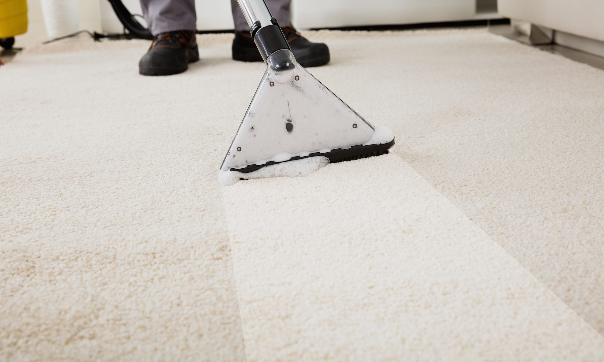 Equipment leaving a path of clean carpet behind it